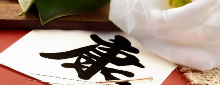 THE ETYMOLOGY OF CHINESE HIEROGLYPHS