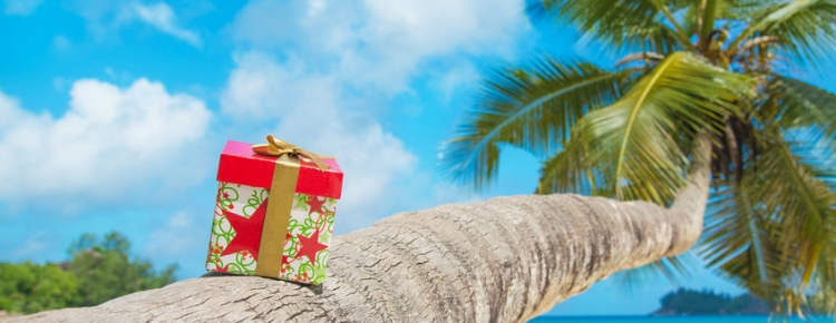 Image result for summer presents